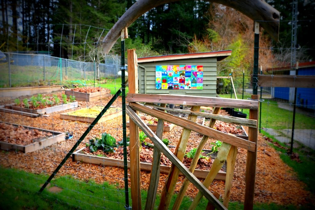 The False Bay School Yum Garden